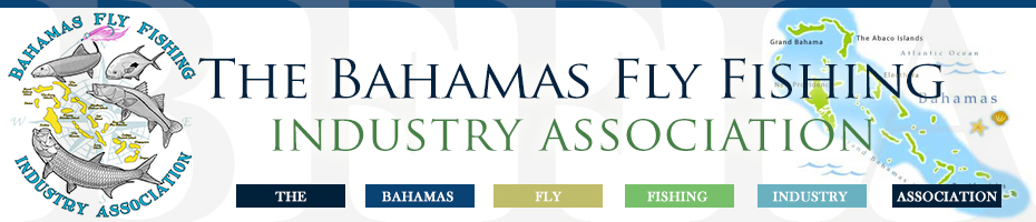 Bahamas Fly Fishing Industry Association