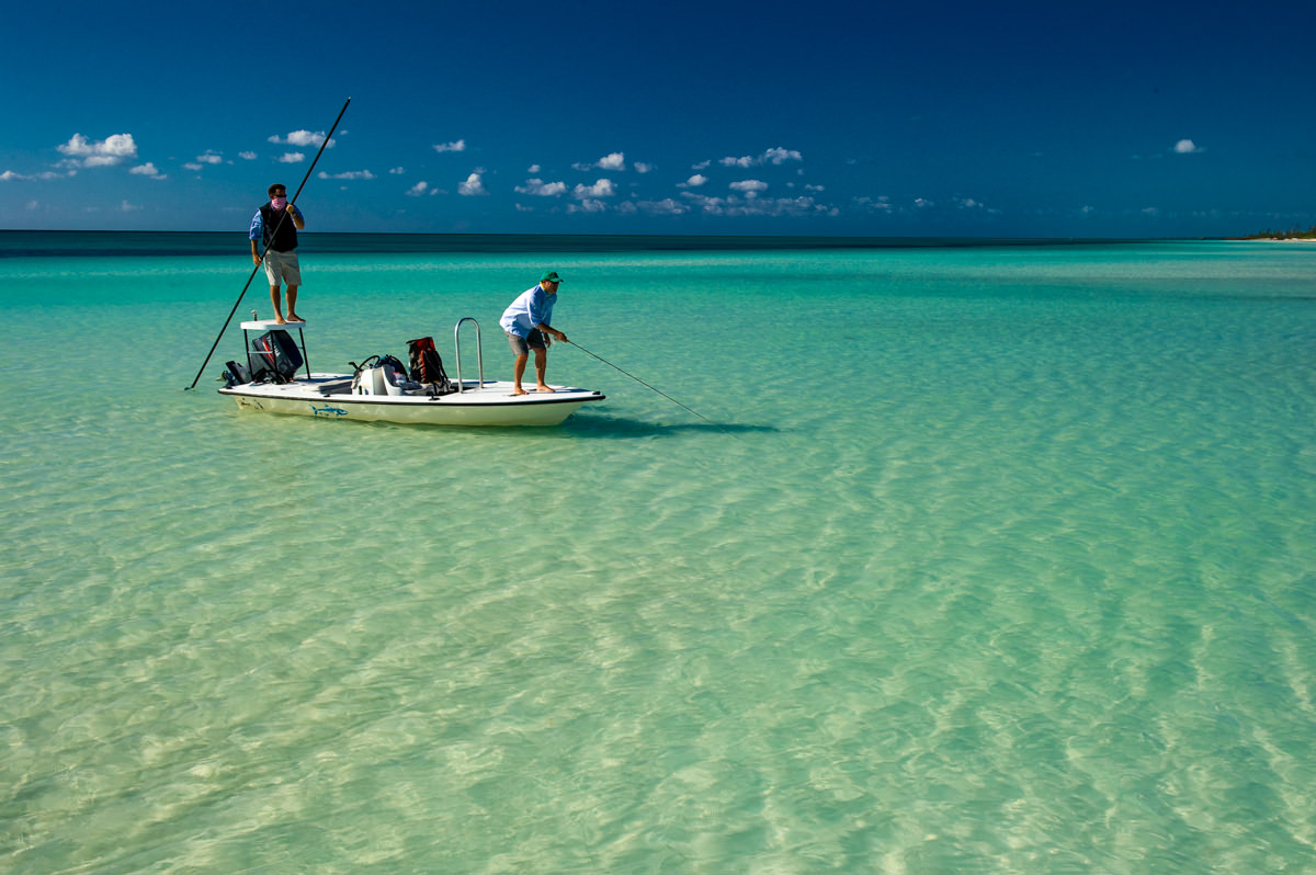 Fly fishing licences largely determined bahamas fly for Fishing nassau bahamas
